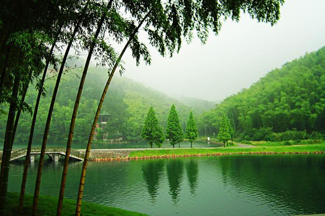 竹海图片风景区